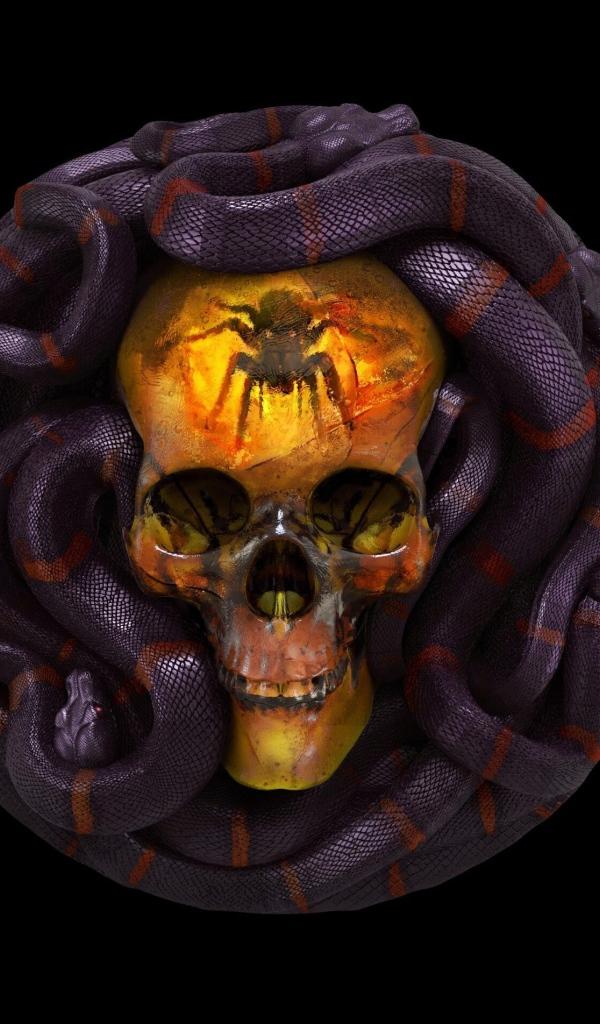 это картинки черепа со змеями она даже