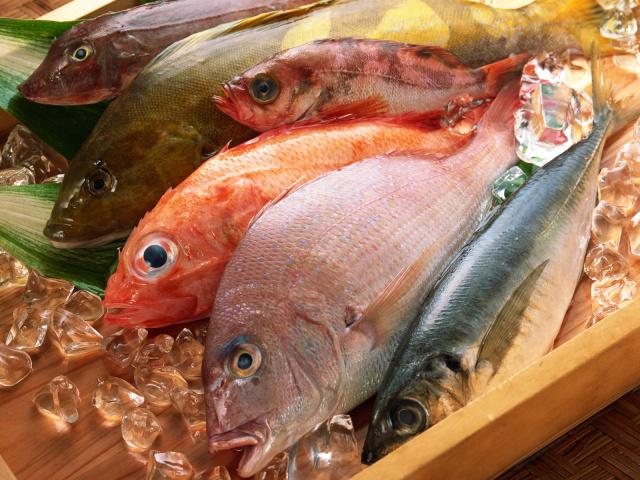 http://www.zastavki.com/pictures/640x480/2012/Food_Seafood_Frozen_fish_011985_29.jpg
