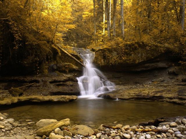 Обои водопад в желтом лесу