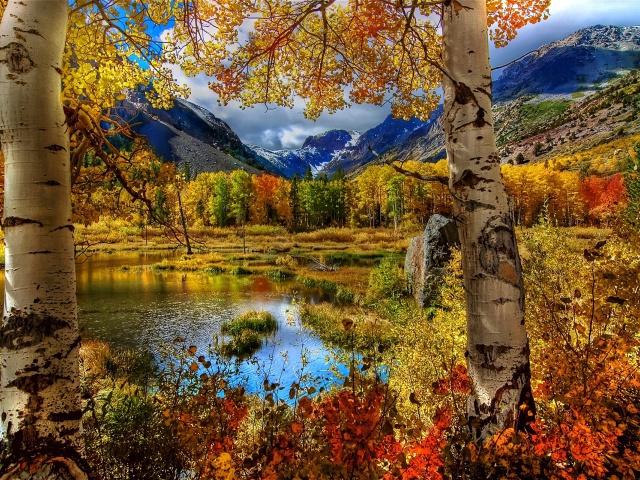 Красивый осенний пейзаж