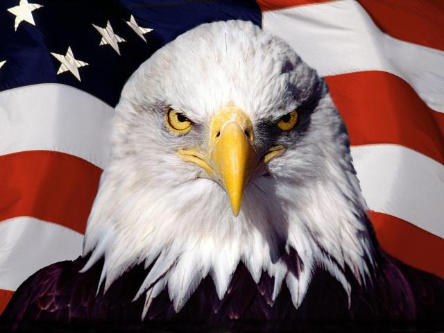Американский патриот 287.76KB. нажмите для просмотра этого изображения в высоком качестве.