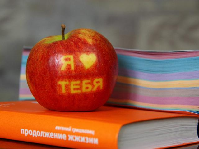 http://www.zastavki.com/pictures/640x480/2013/Love__039738_29.jpg