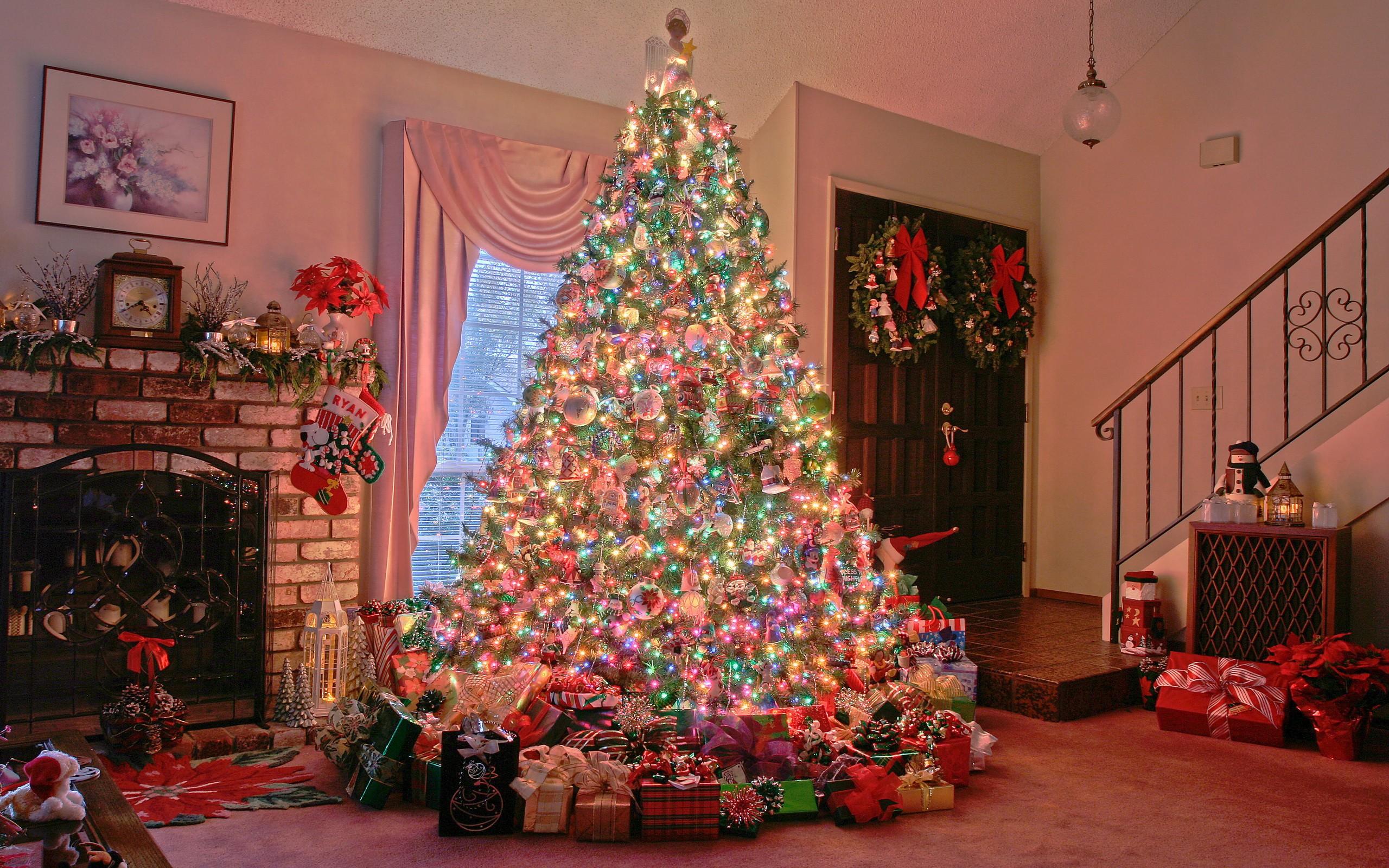 данный снимок, картинки елки для рождества поиск адресов телефонов