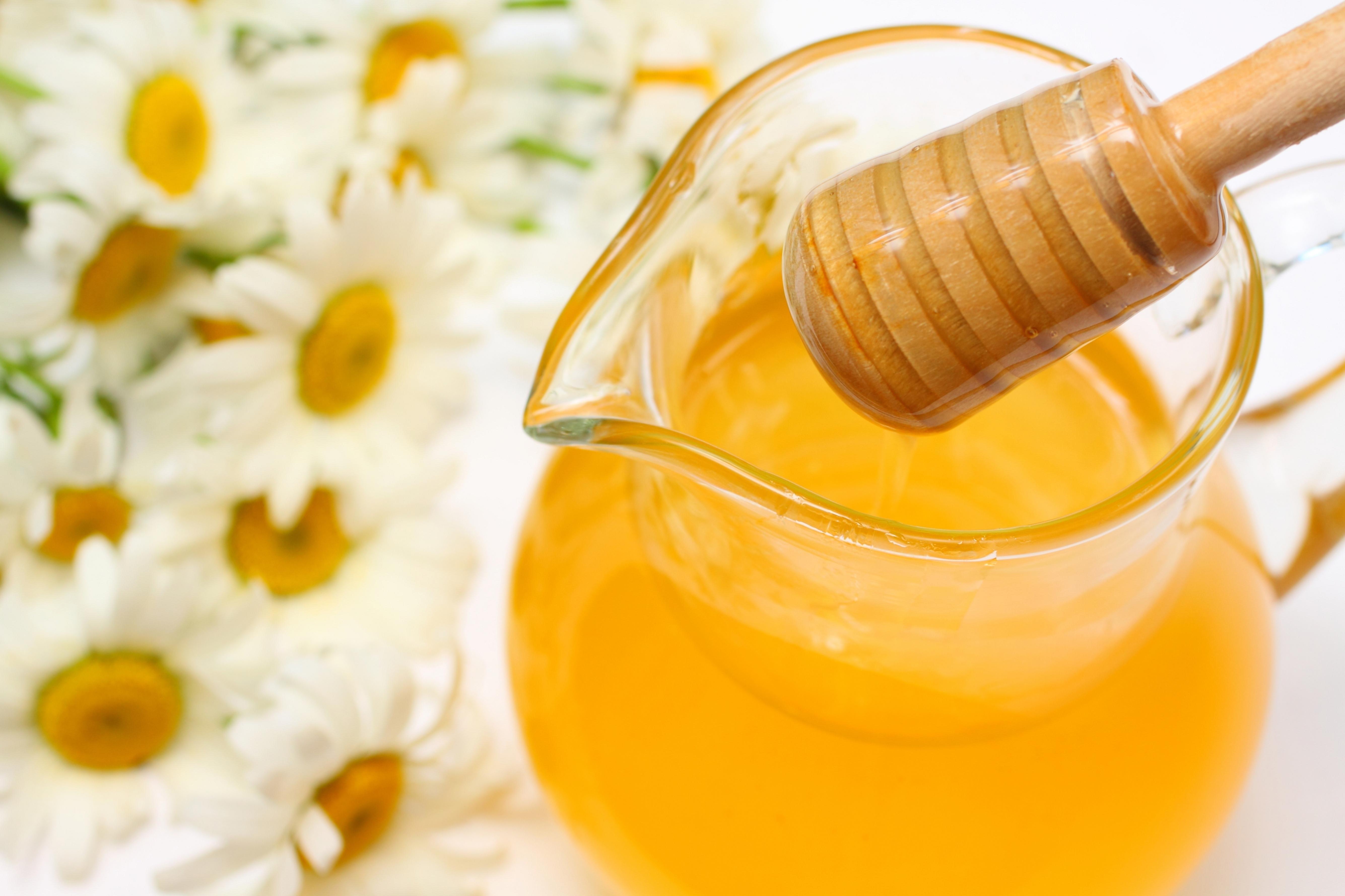 Sweet Dogs Wallpaper Yellow honey in a jar ...