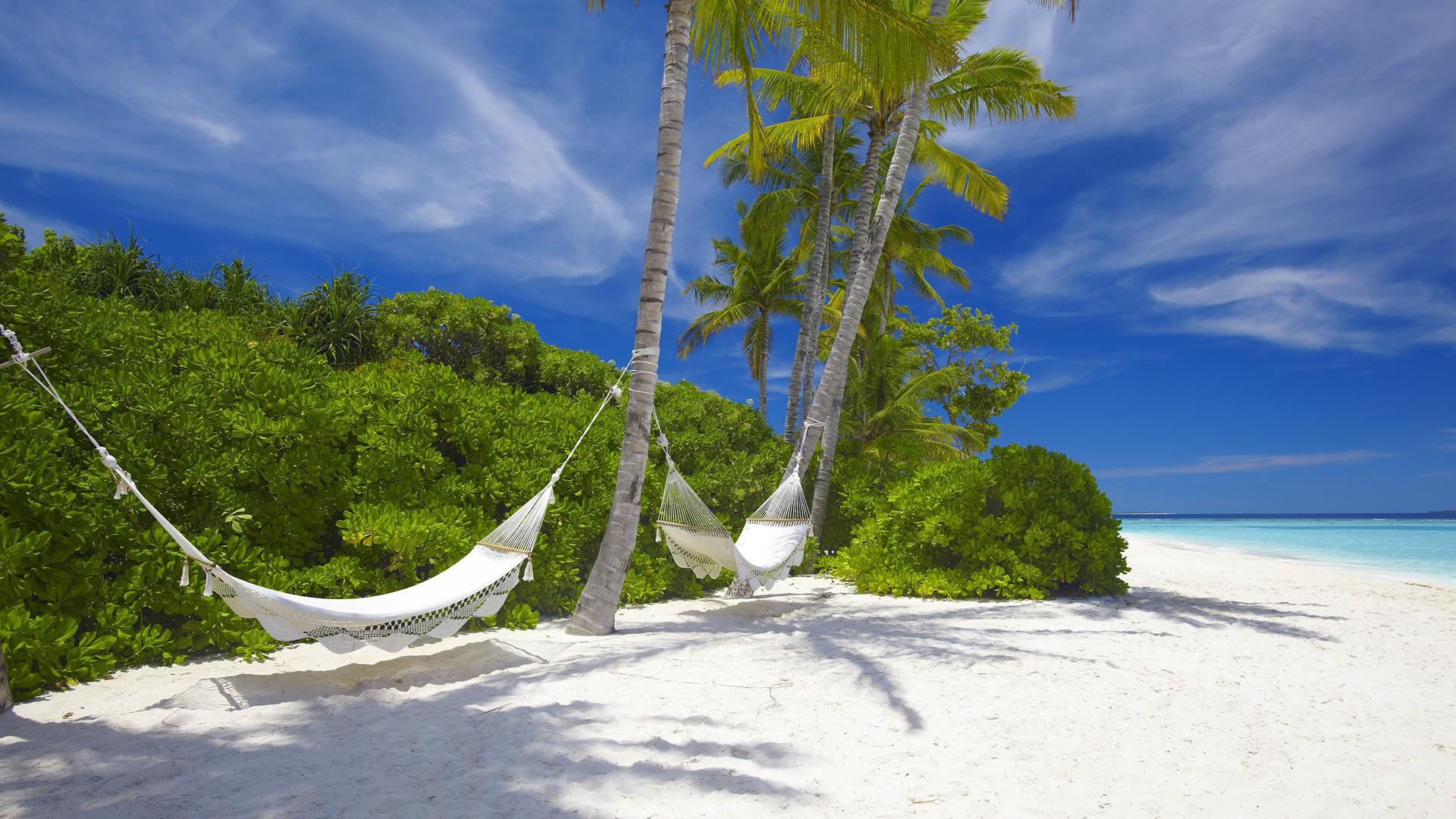 Hammocks on the beach - Hammocks Hung On The Trees