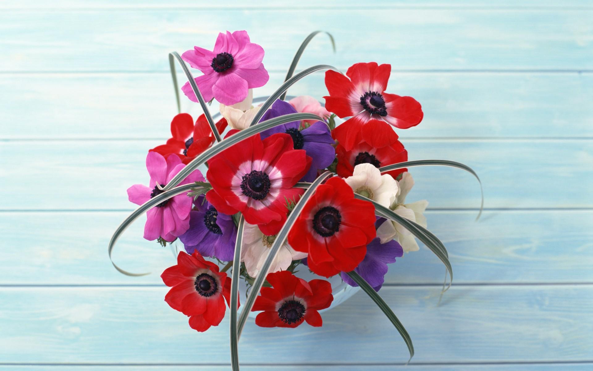 Прикольные картинки цветов на рабочий стол, дети семье