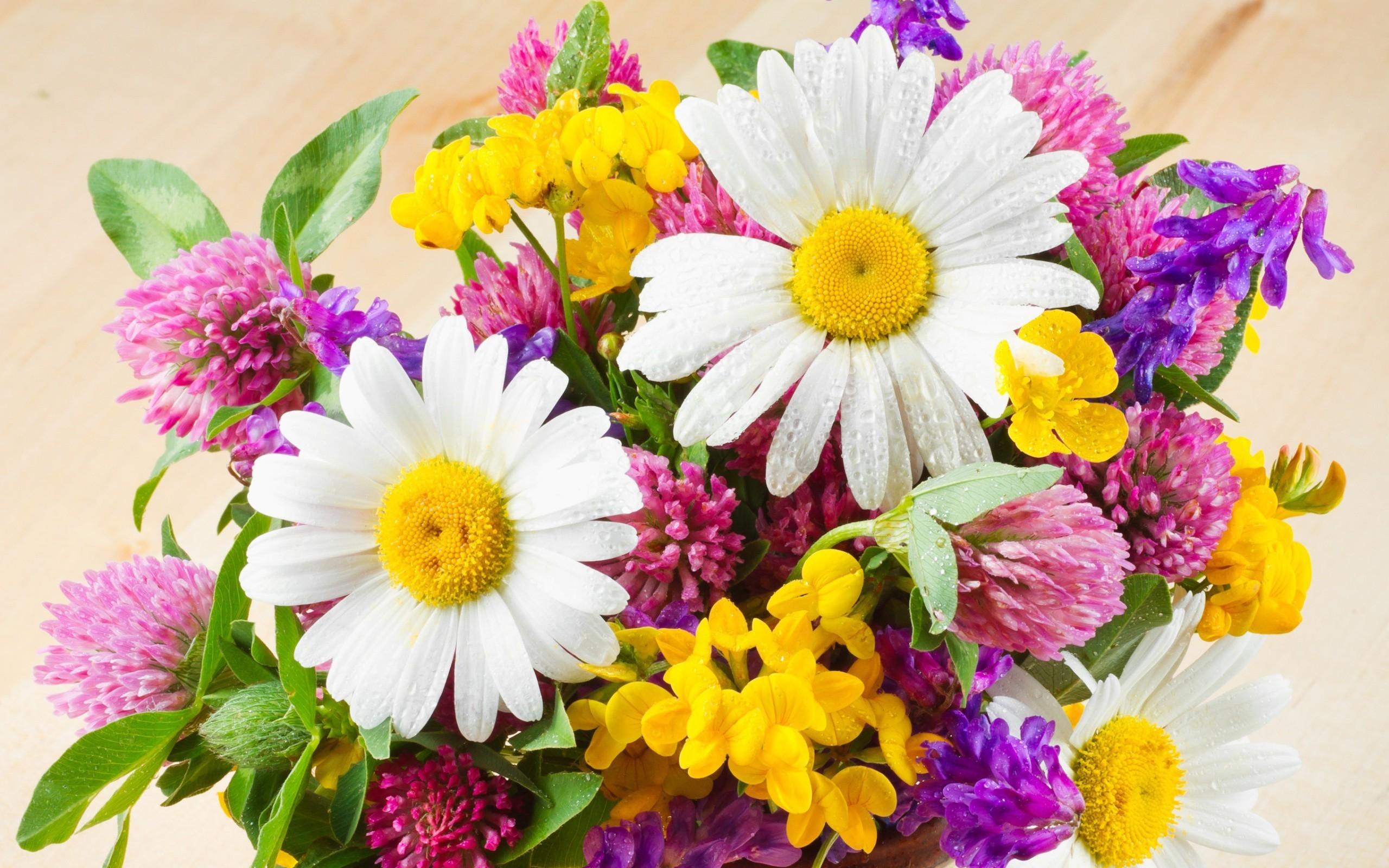 Открытка с днем рождения цветы полевые