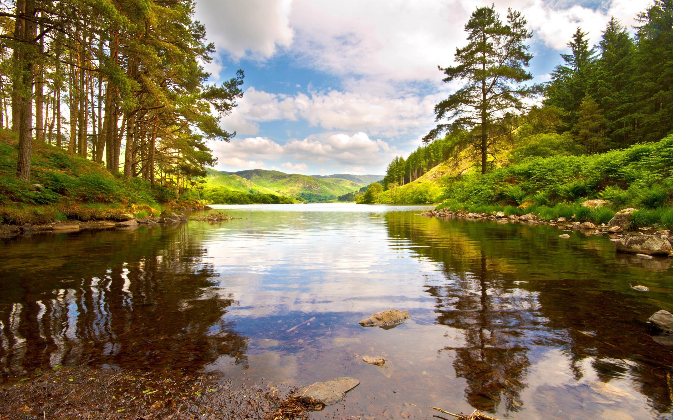 Картинка с рекой и с лесом, мужчине рождением