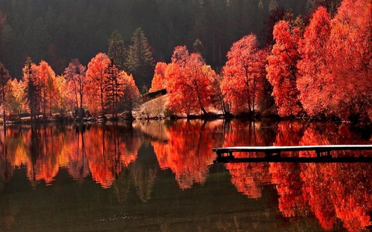 фото красной осени сшить валенки