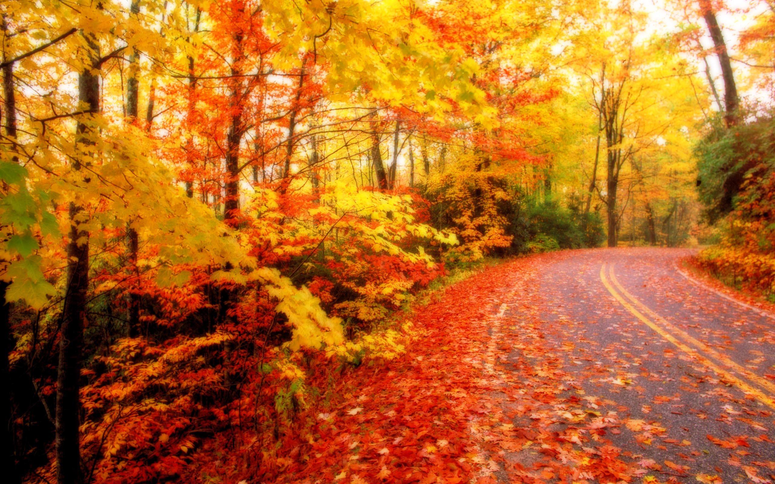 Картинки изображения осень, сделаны