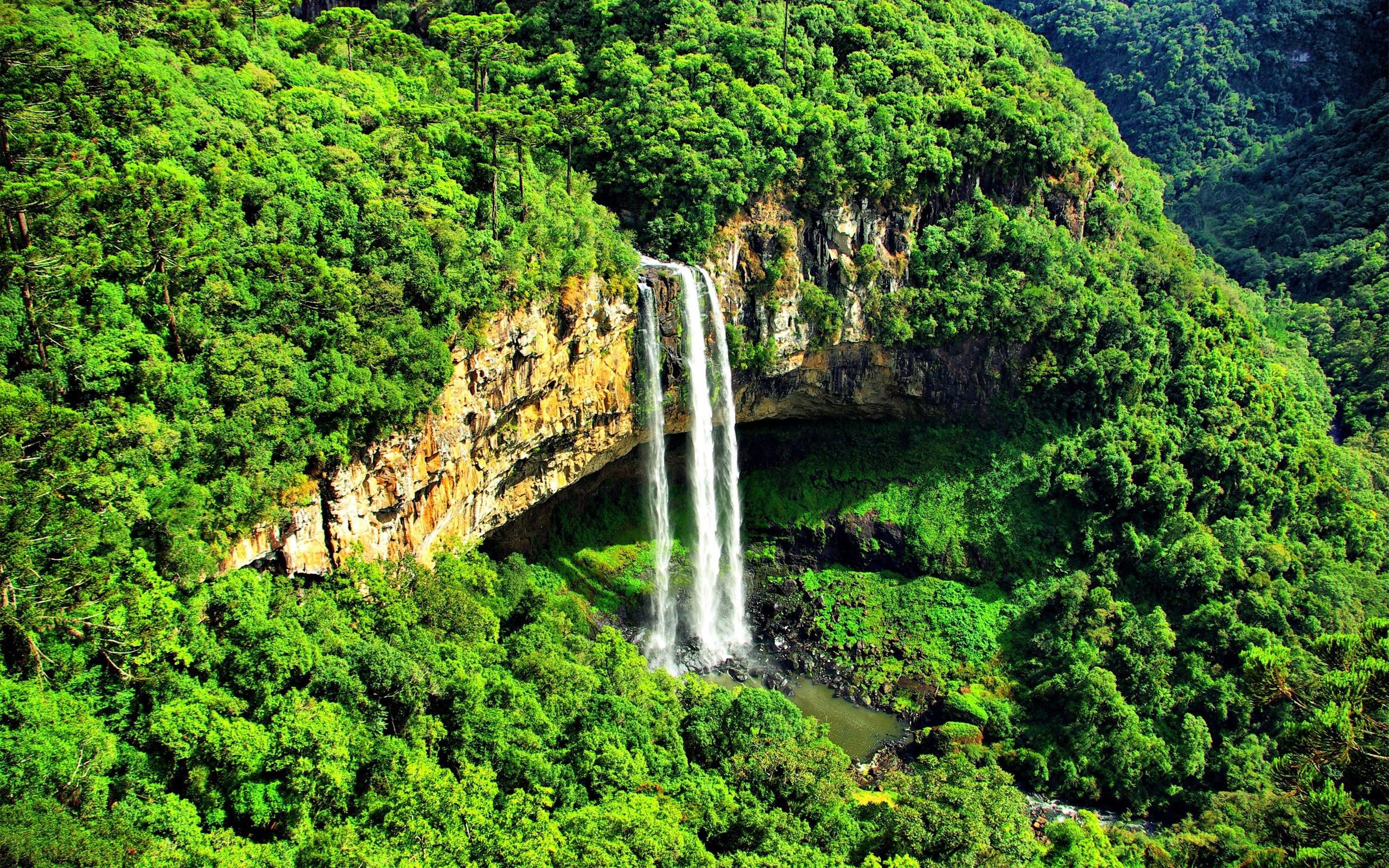 австралия горы водопады виды фото эстафетчица сборной