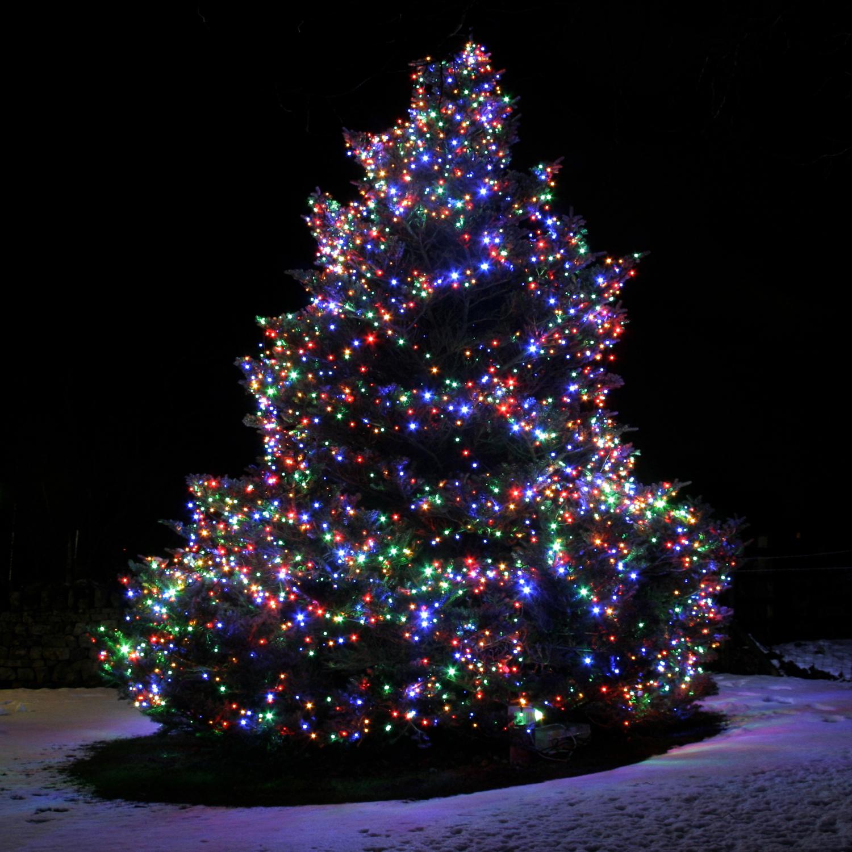 Фото елки новогодней на телефон