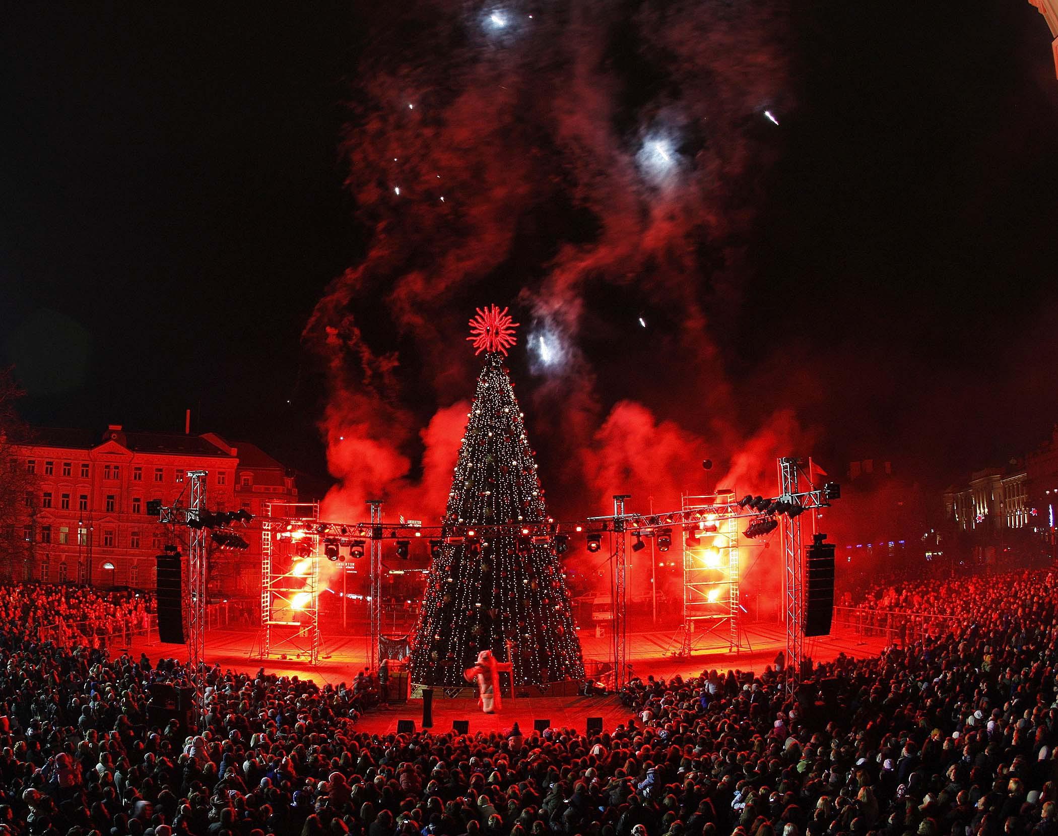 Lighting Of The Christmas Tree In Vilnius 2014 Wallpapers