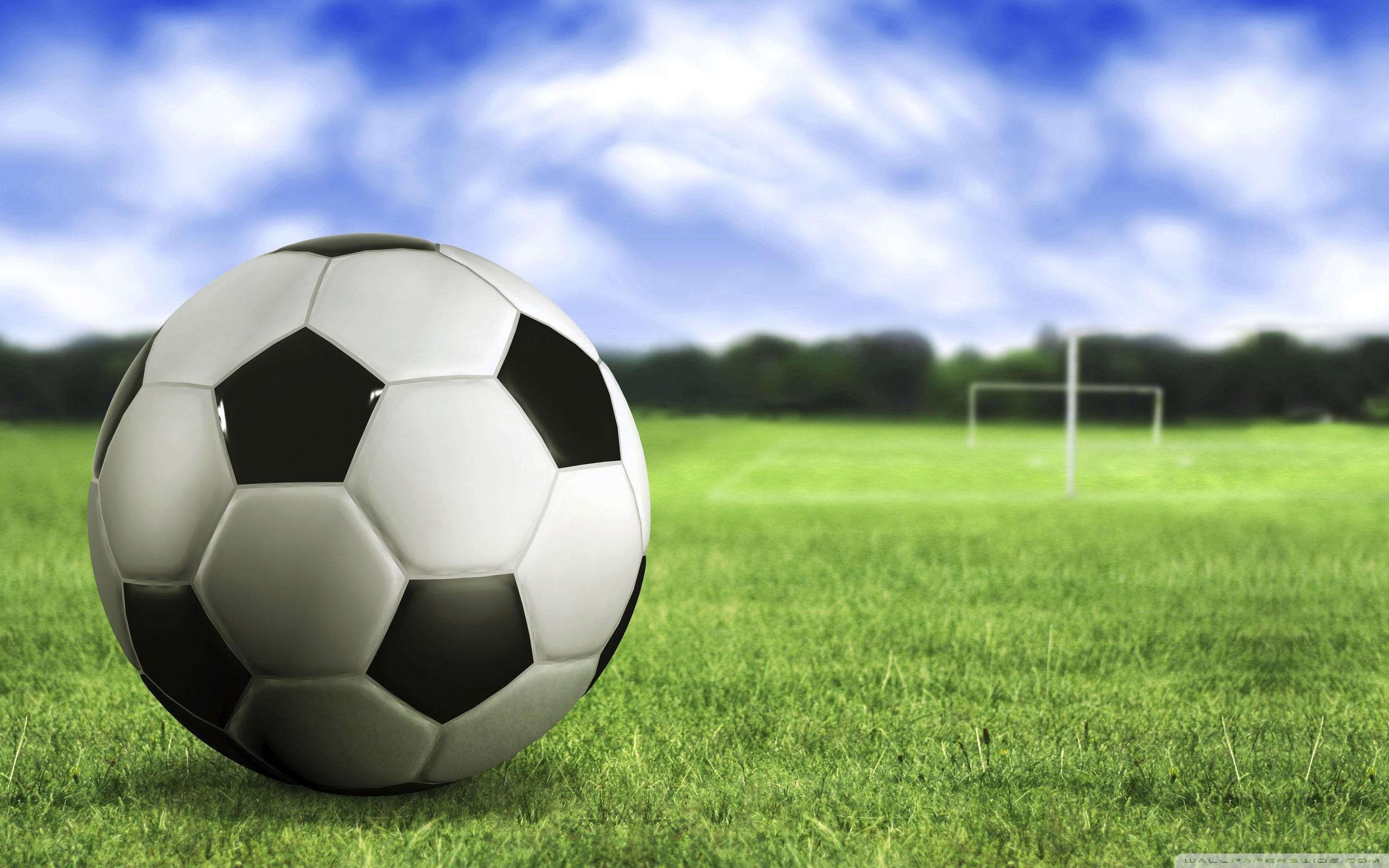 Green grass, Blue sky, Soccer ball, Soccer field ...