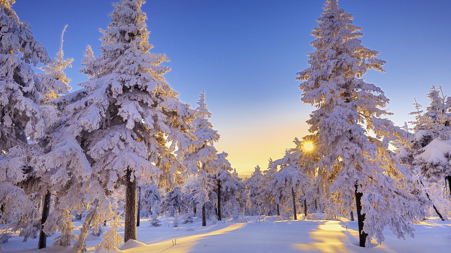 красивые картинки для рабочего стола зима на весь экран