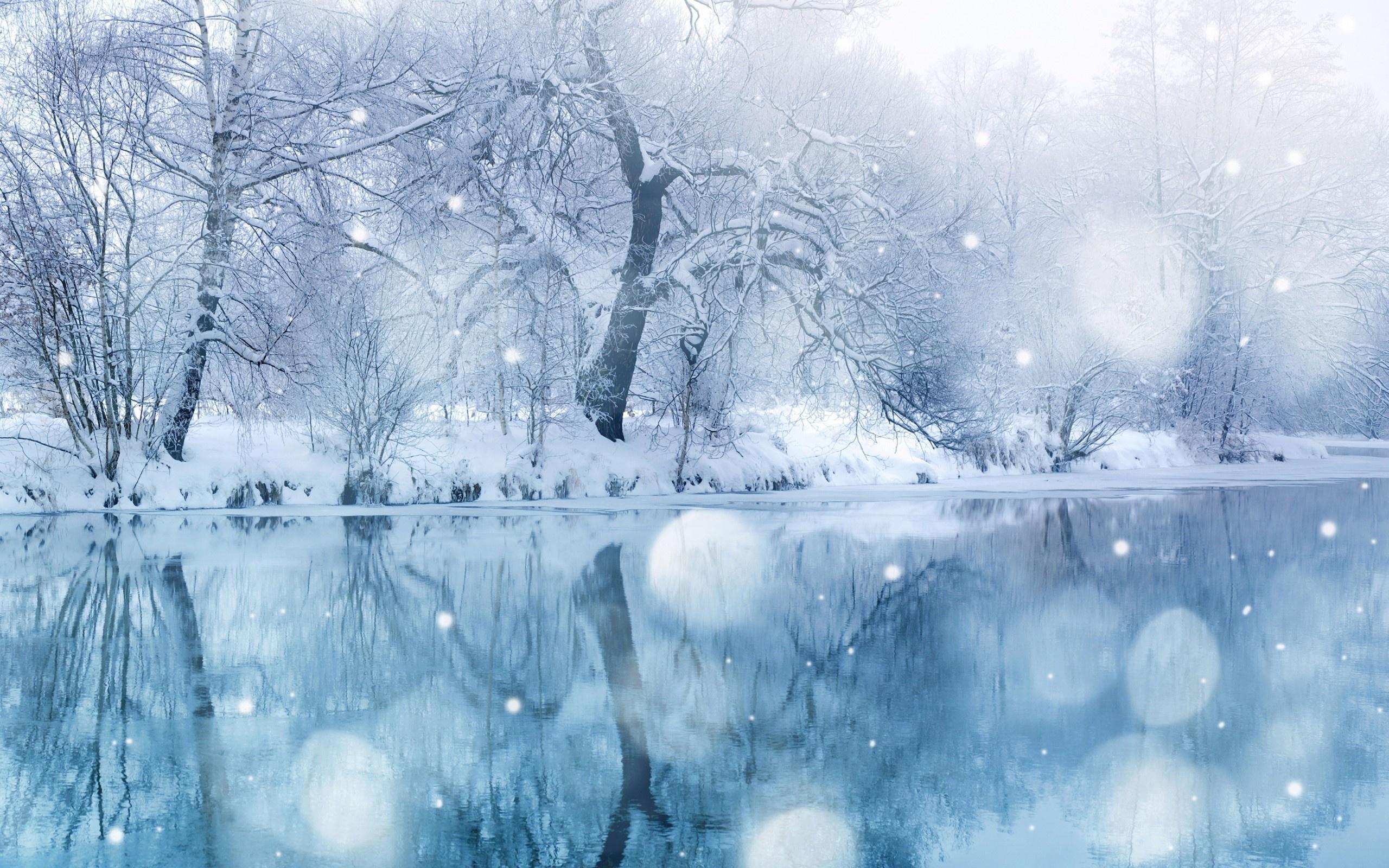 https://www.zastavki.com/pictures/originals/2013/Winter_Winter_forest_near_the_river_053912_.jpg
