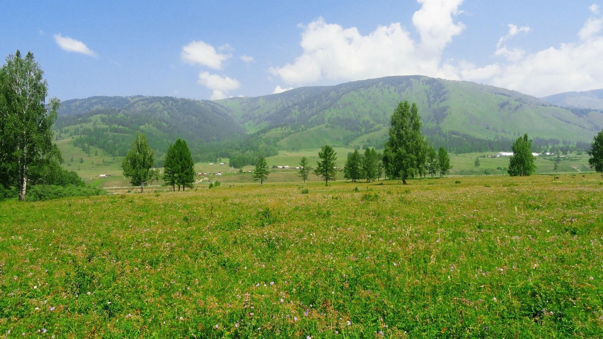 Russia grass hills landscapes nature wallpaper wallpapers for Grass landscape