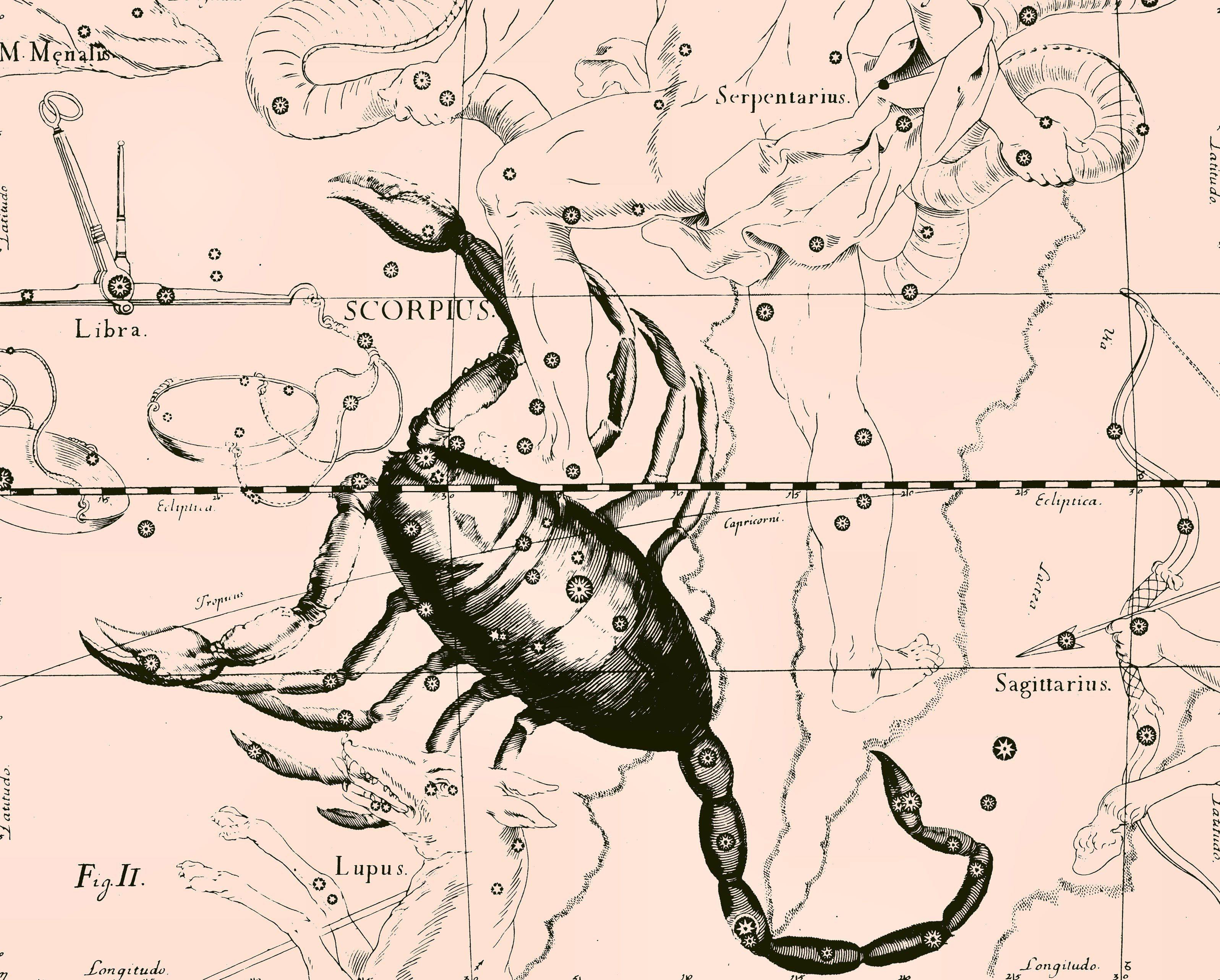 http://www.zastavki.com/pictures/originals/2013/Zodiac_signs_Star_chart__scorpion__pink_047400_.jpg