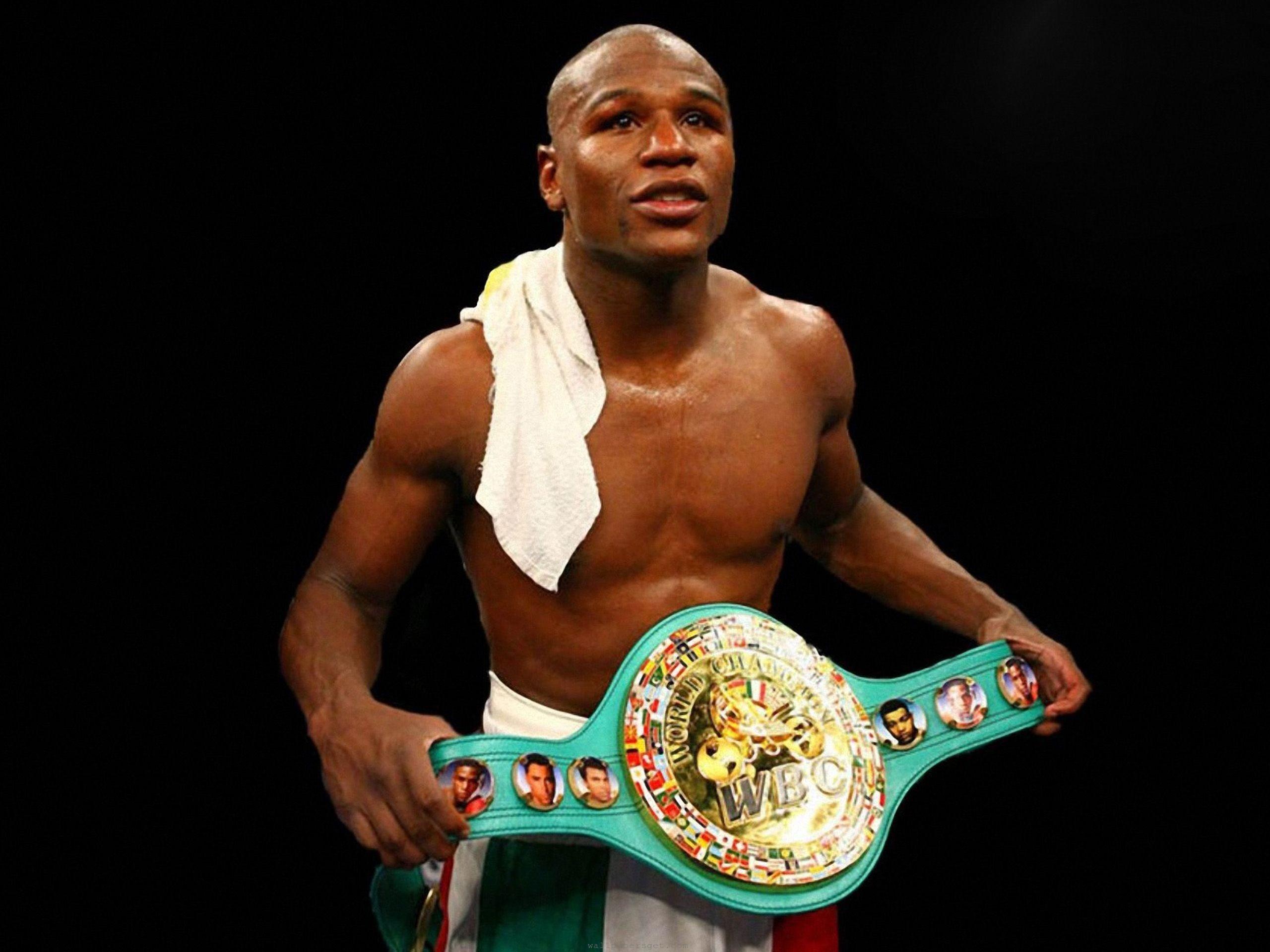 Боксеры мира фото