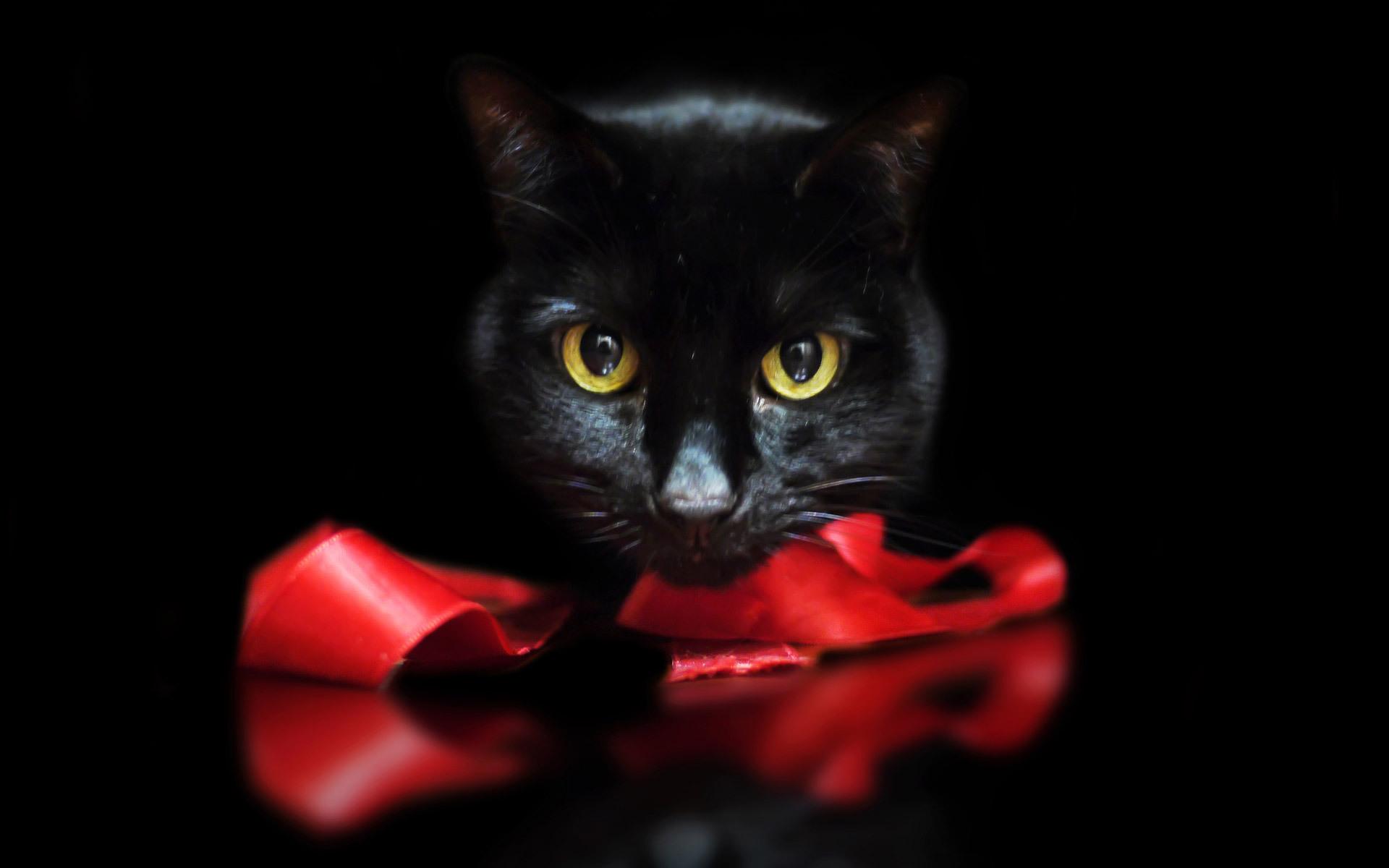 Тете, прикольные черно-красные картинки