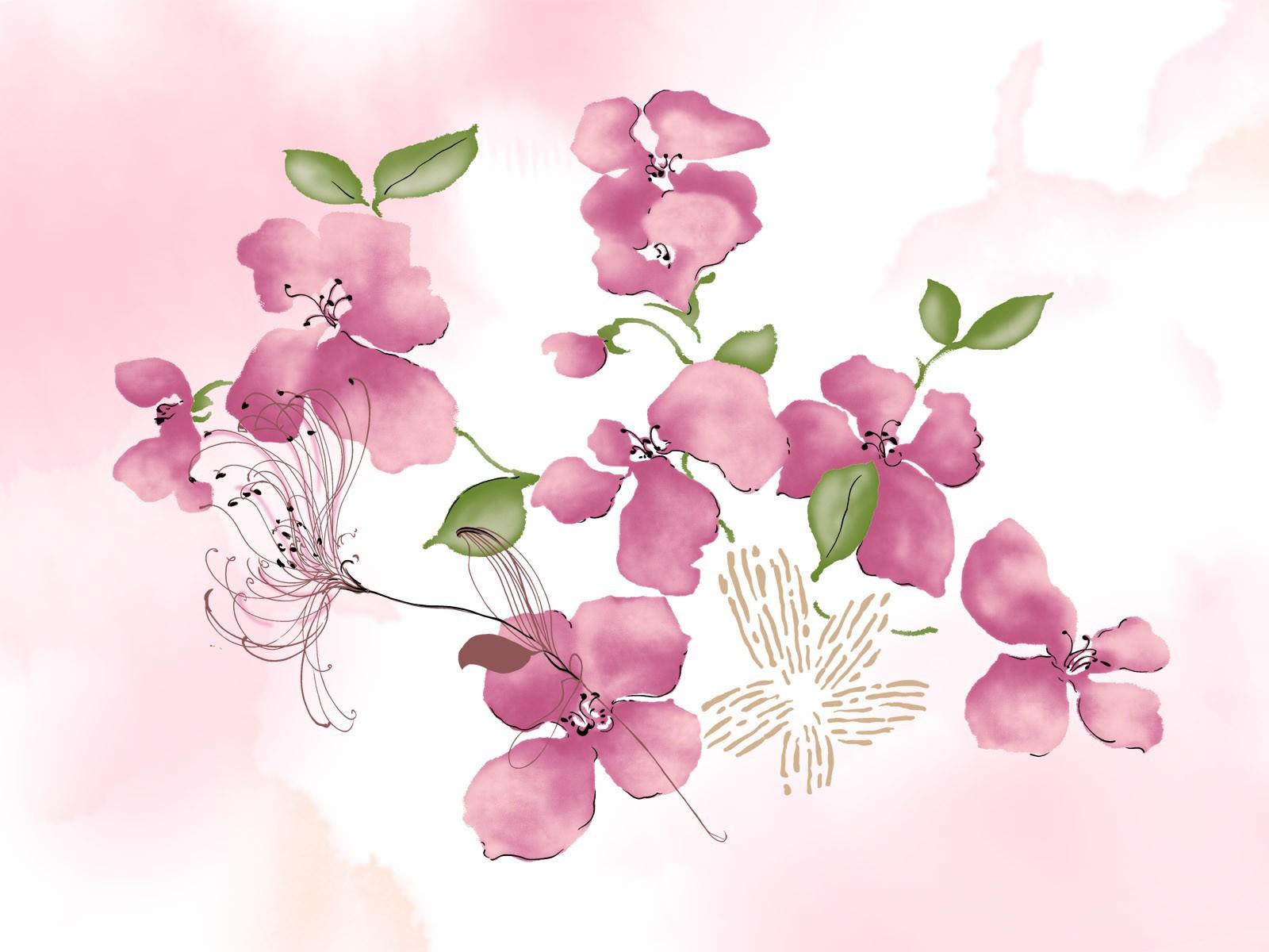 Фото цветов на белом фоне