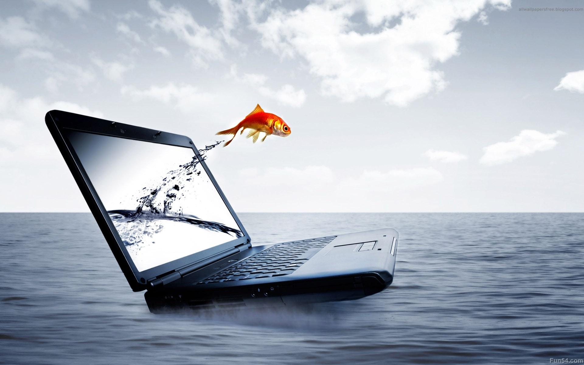 Hp Wallpaper Laptop