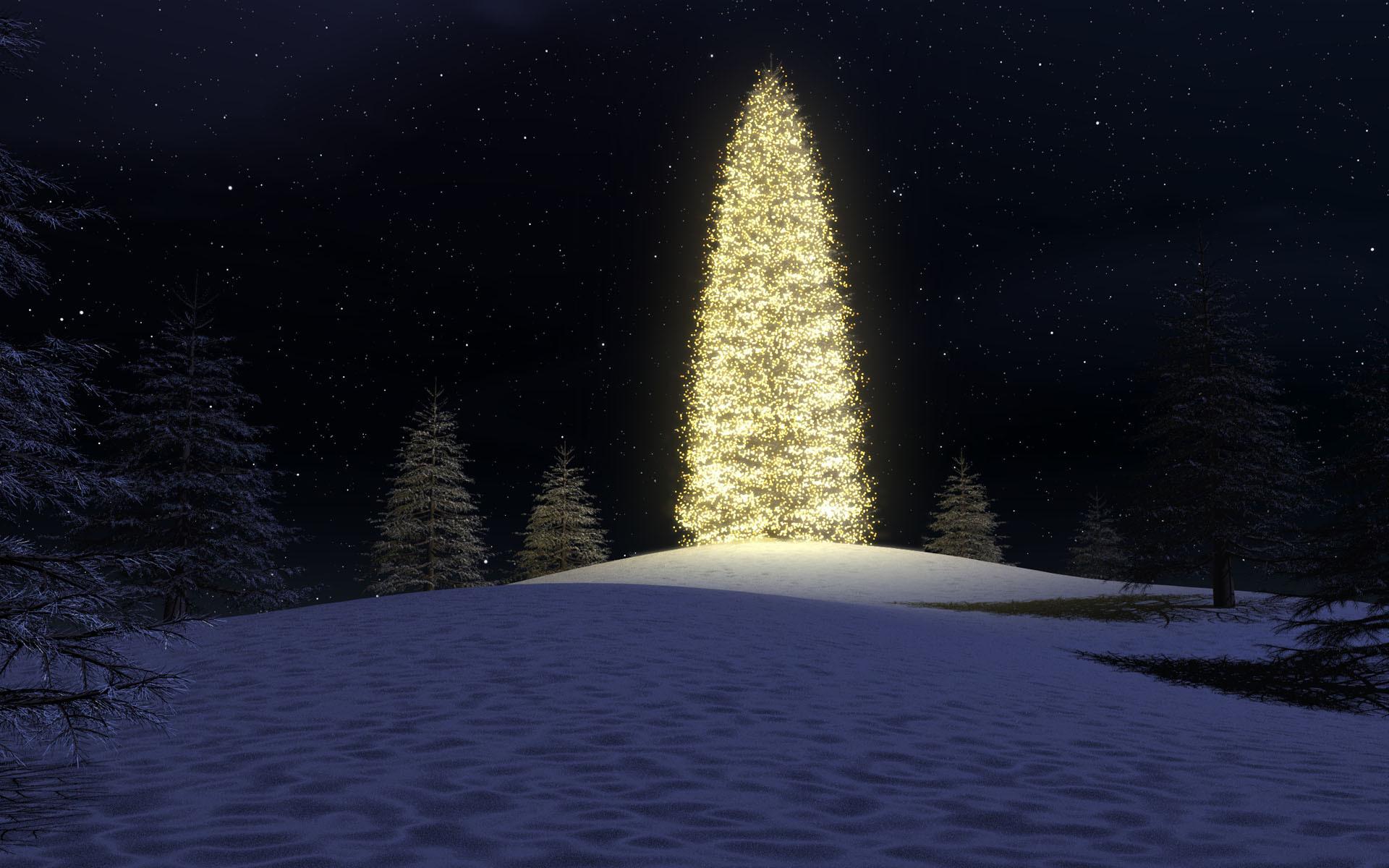 таким картинки рождественская ночь в лесу ввела обязательную идентификацию
