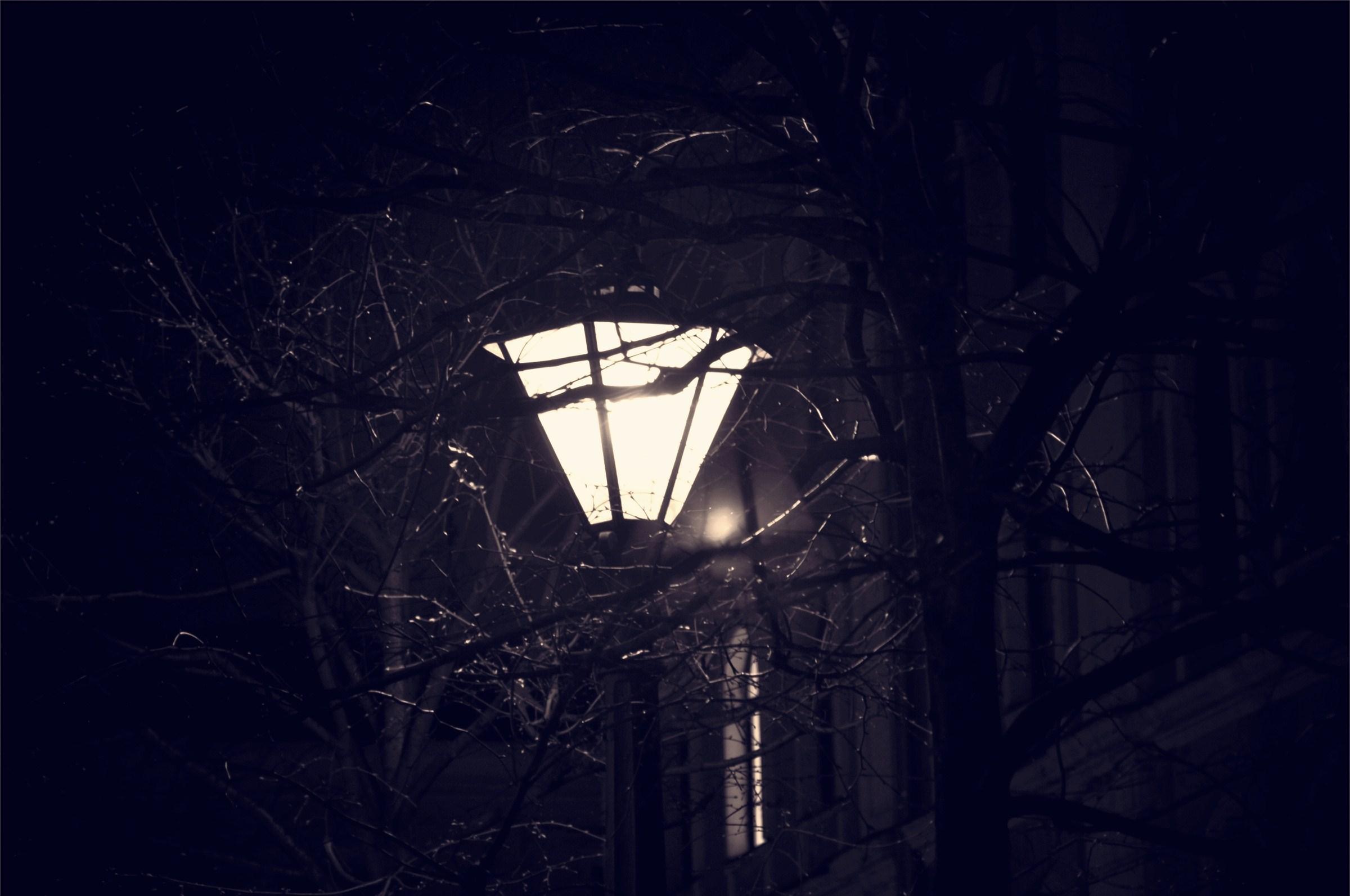 картинка фонарь во тьме талант чистую, настоящую