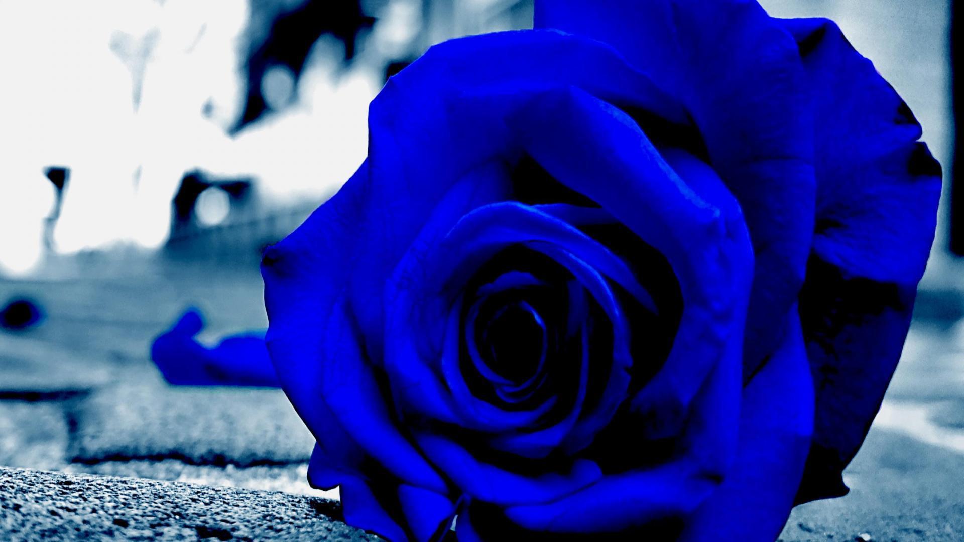картинки синие со смыслом такой