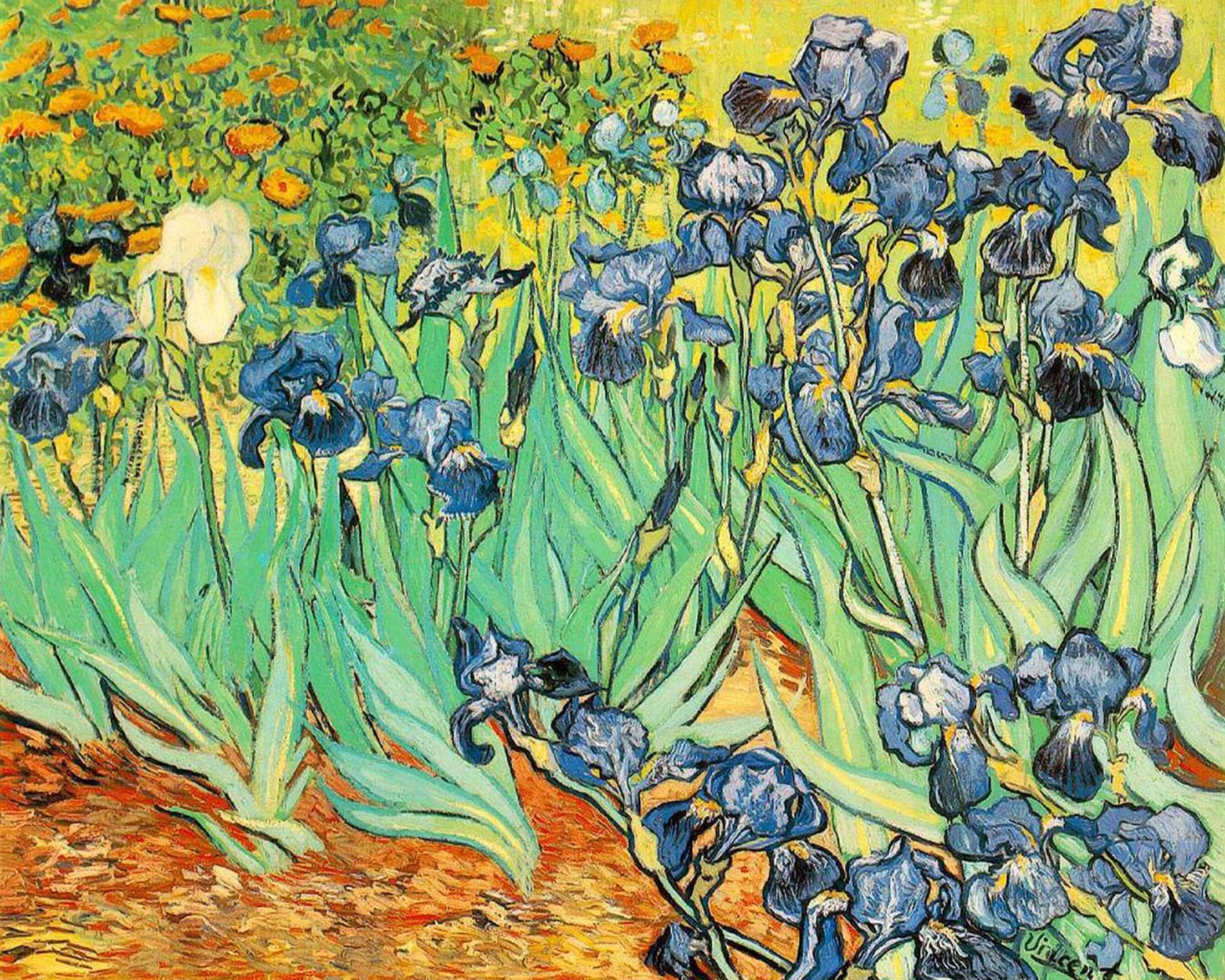 painting of vincent van gogh irises