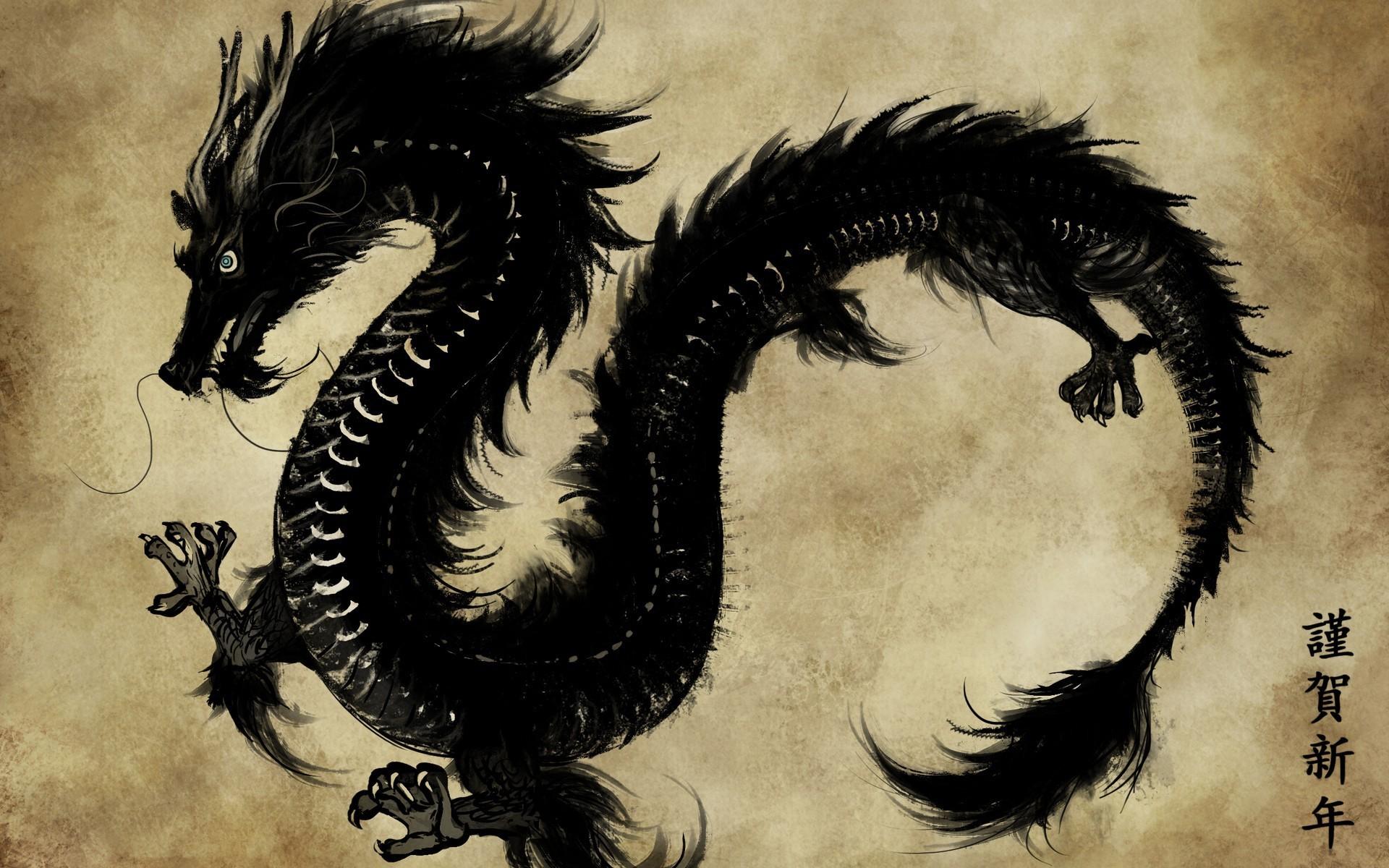 download black dragon wallpaper - photo #7
