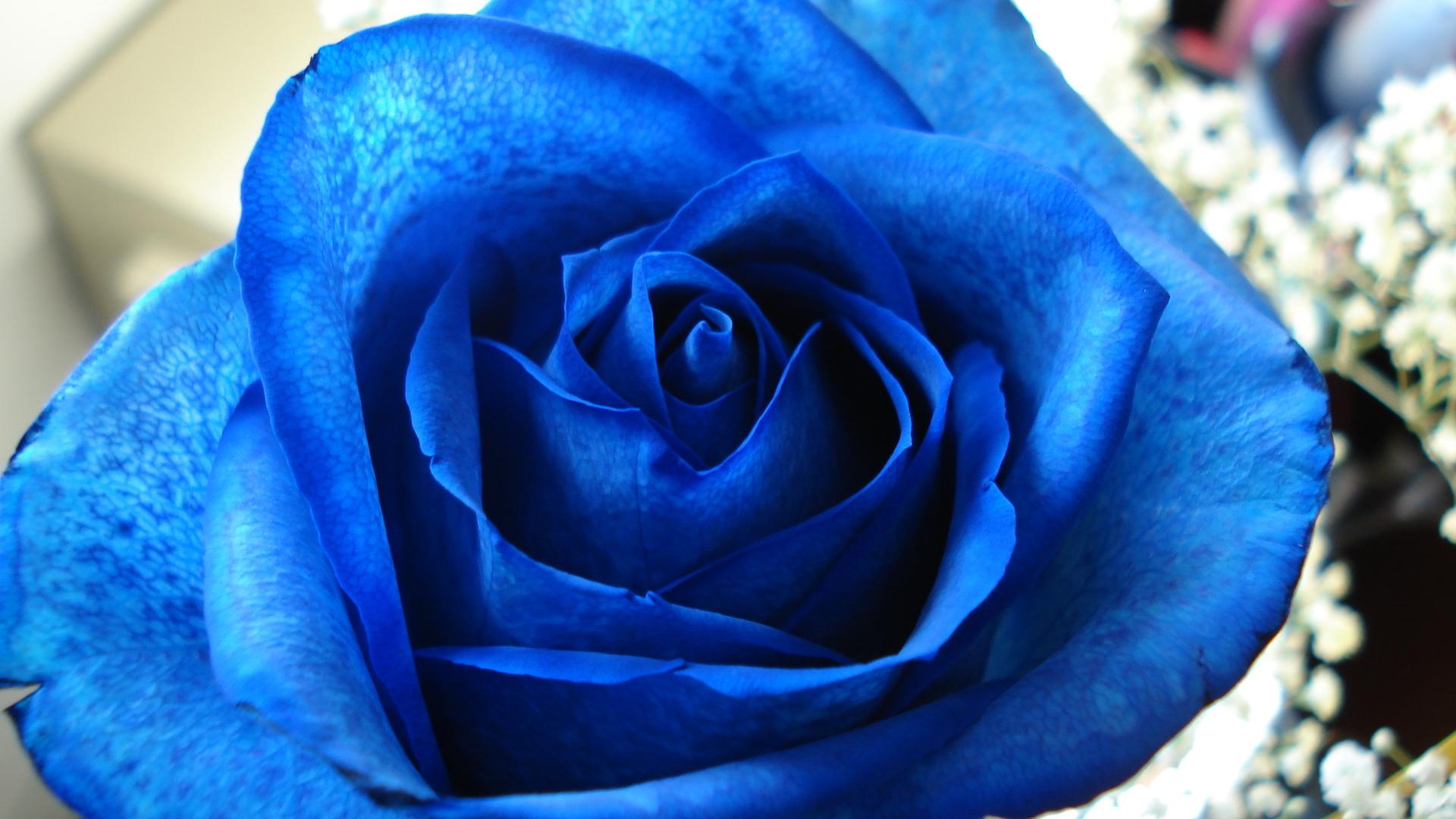 Христос воскрес, 8 марта открытка голубая