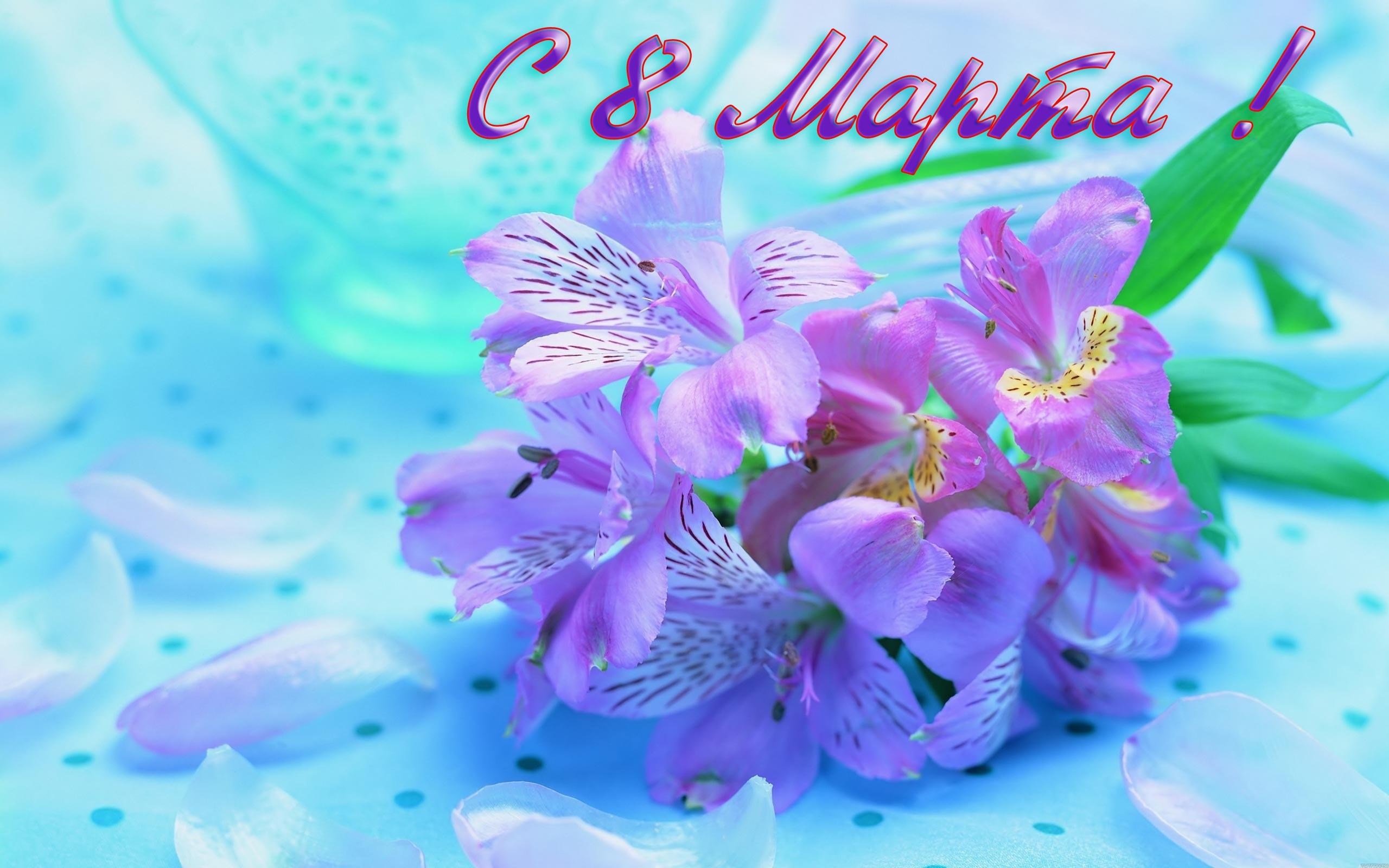 Скачать заставки на рабочий стол цветы на 8 марта металлический подарок на 8 марта