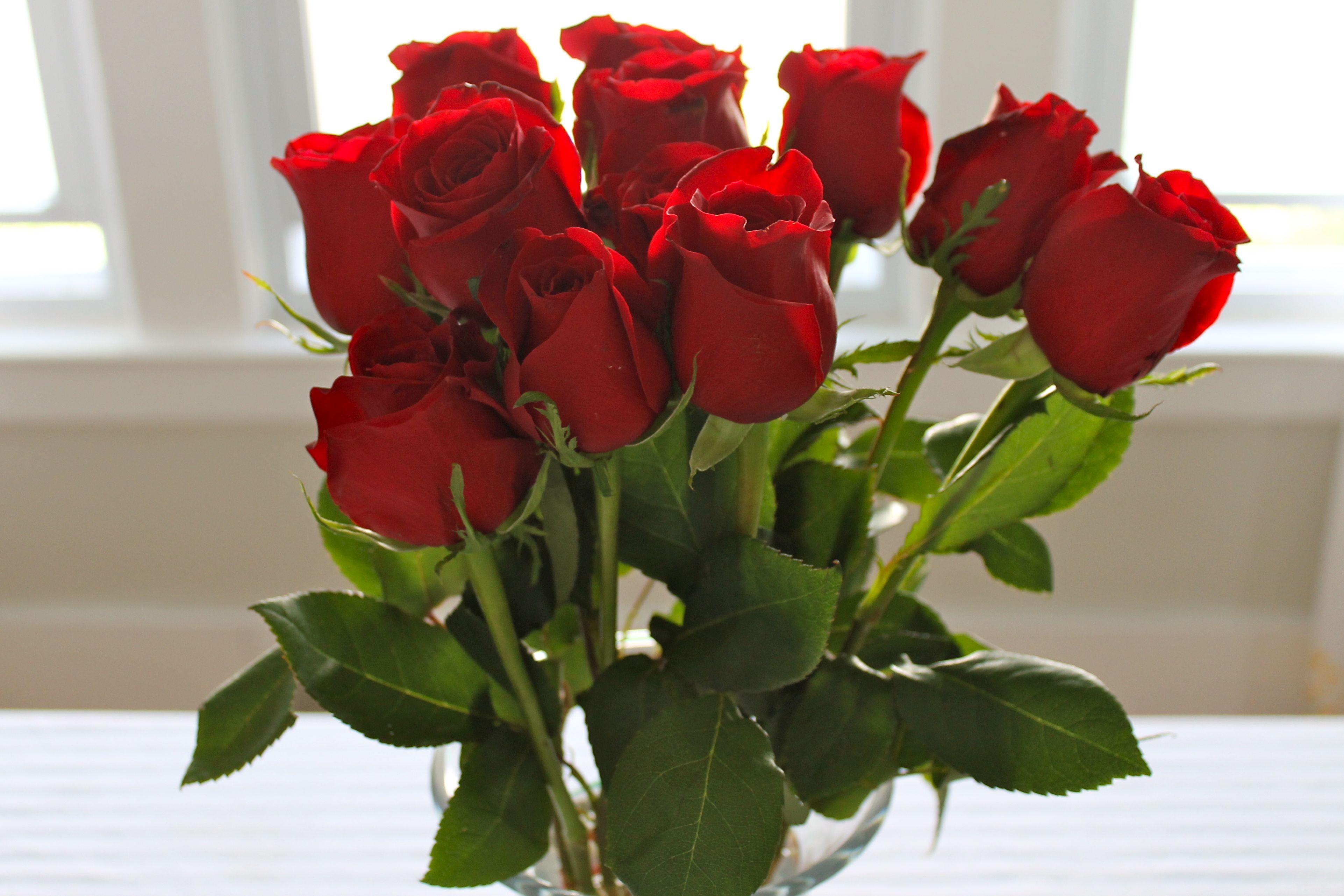 8 марта картинки роза, юмором