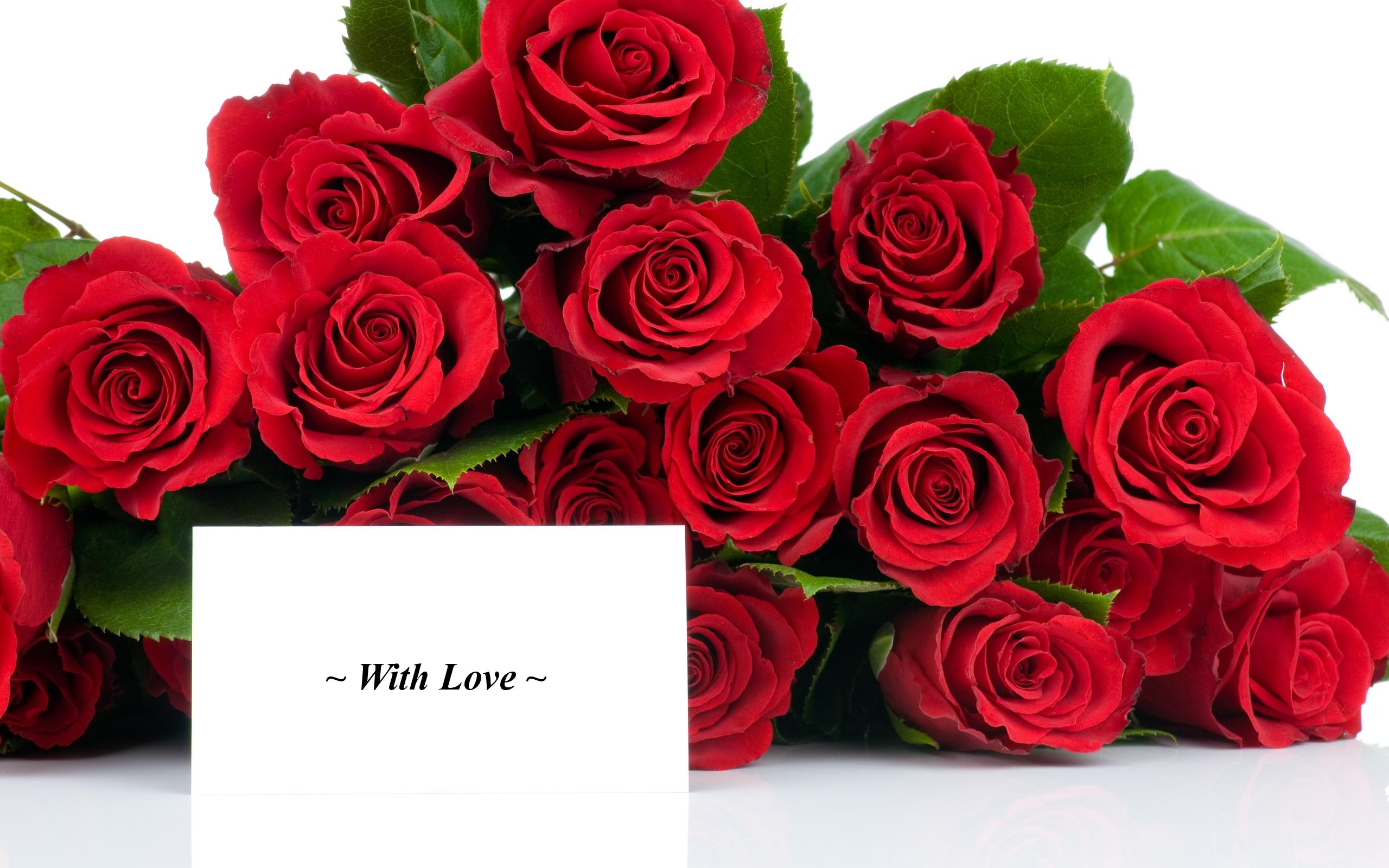 Картинки розы 8 марта красивые