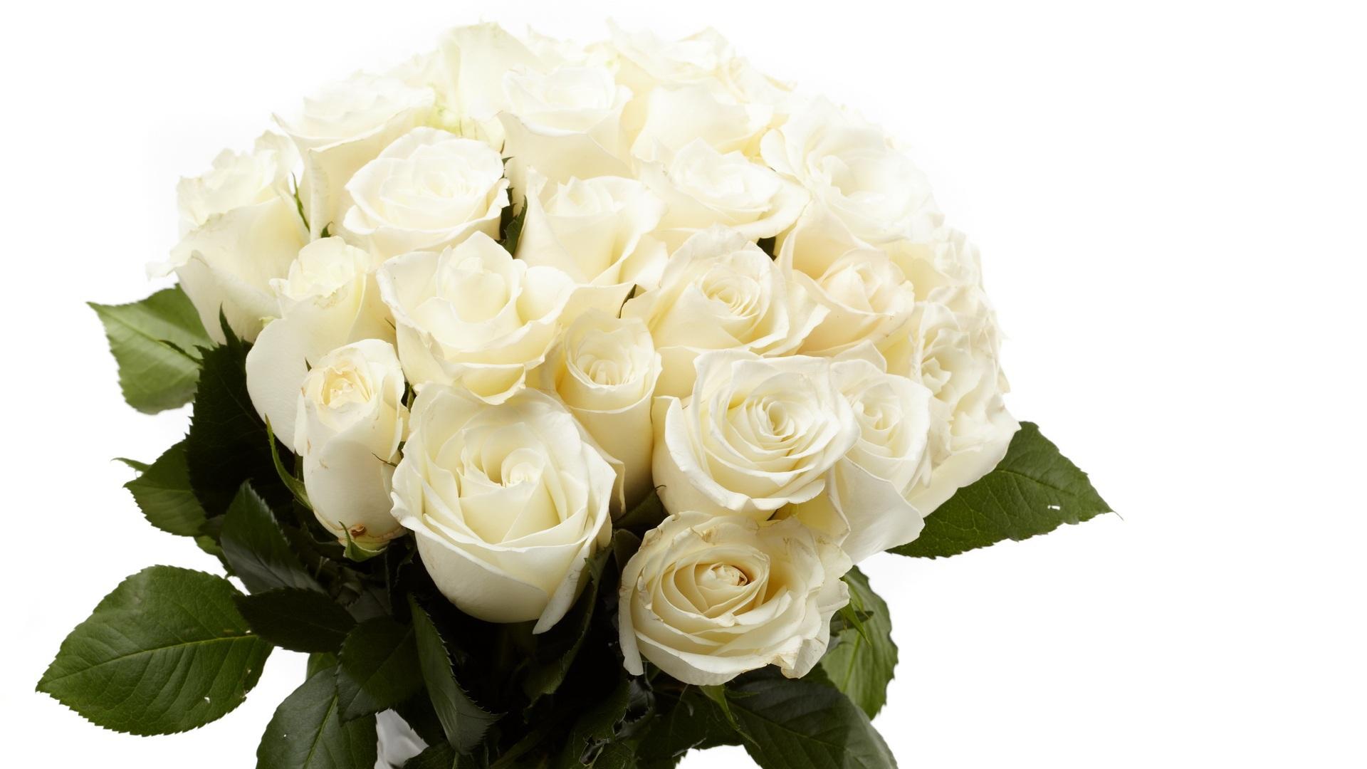 Открытки букет из белых роз