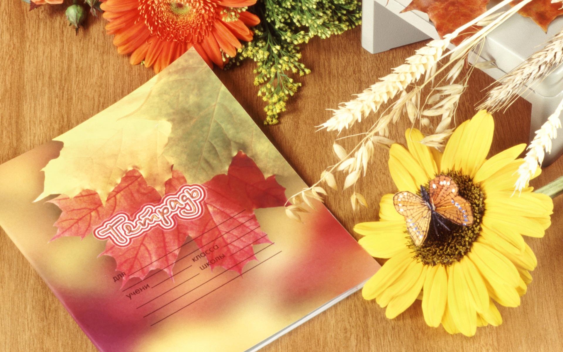 картинки осень на первое сентября стройности нины