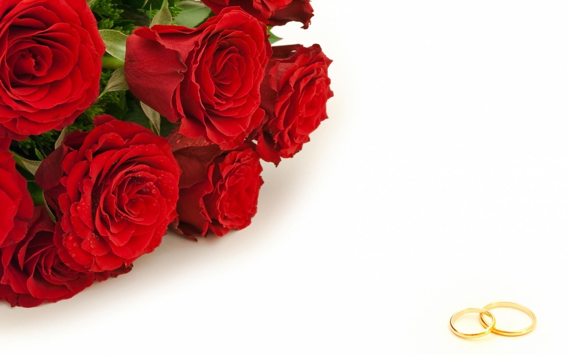 Картинки красивые розы с надписями (35 фото) Прикольные картинки и юмор 66