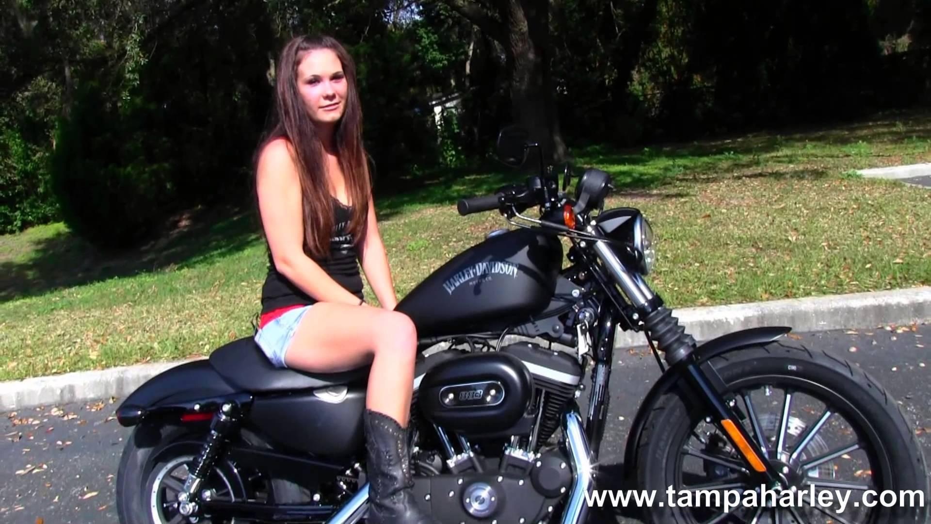 Incredibly fast motorcycle Harley-Davidson XL 883N ...