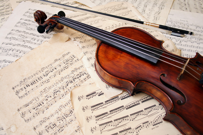 картинки скрипки на фоне нот товаров услуг ценам