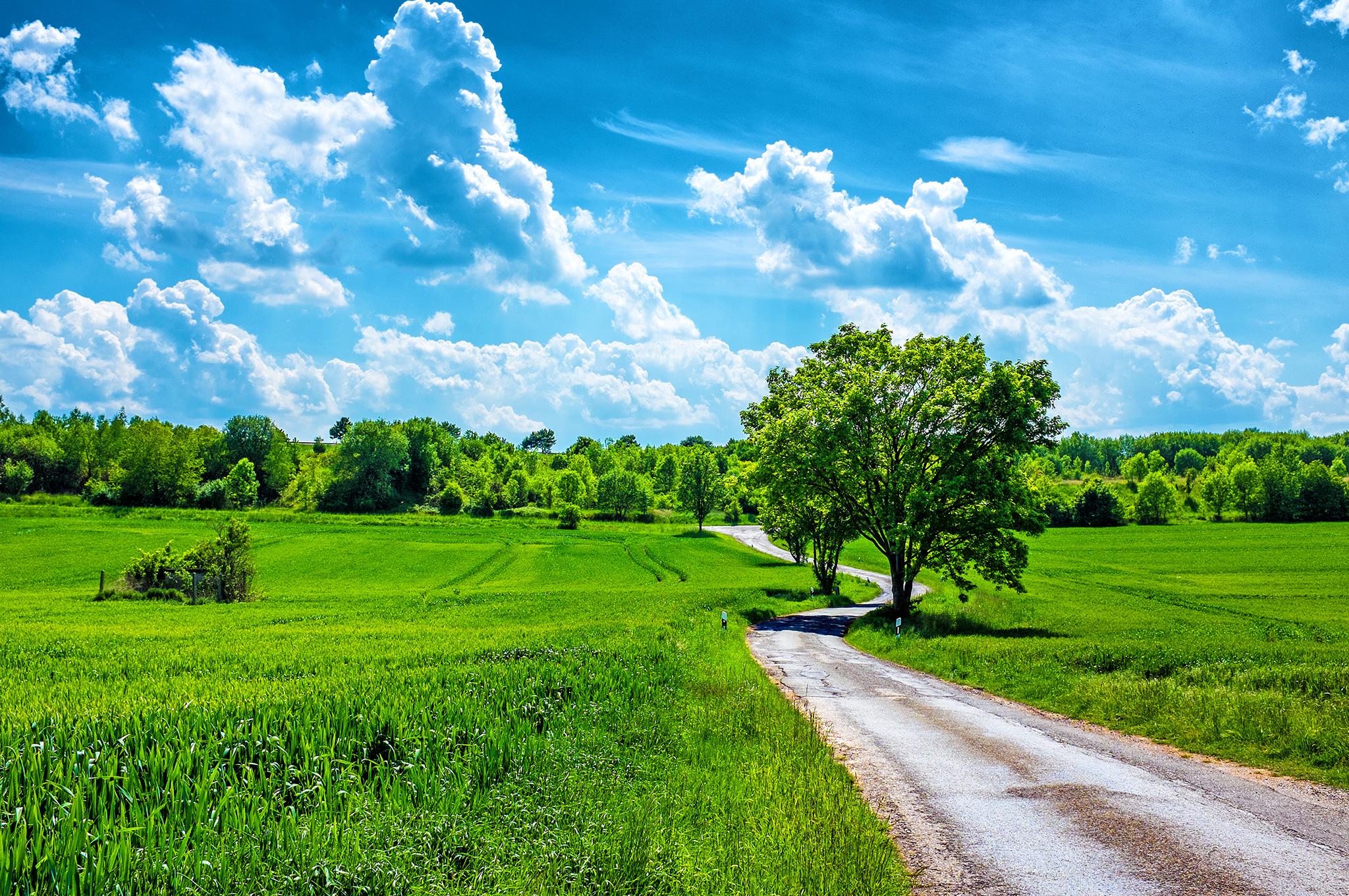 картинки пейзажа летнего зависит