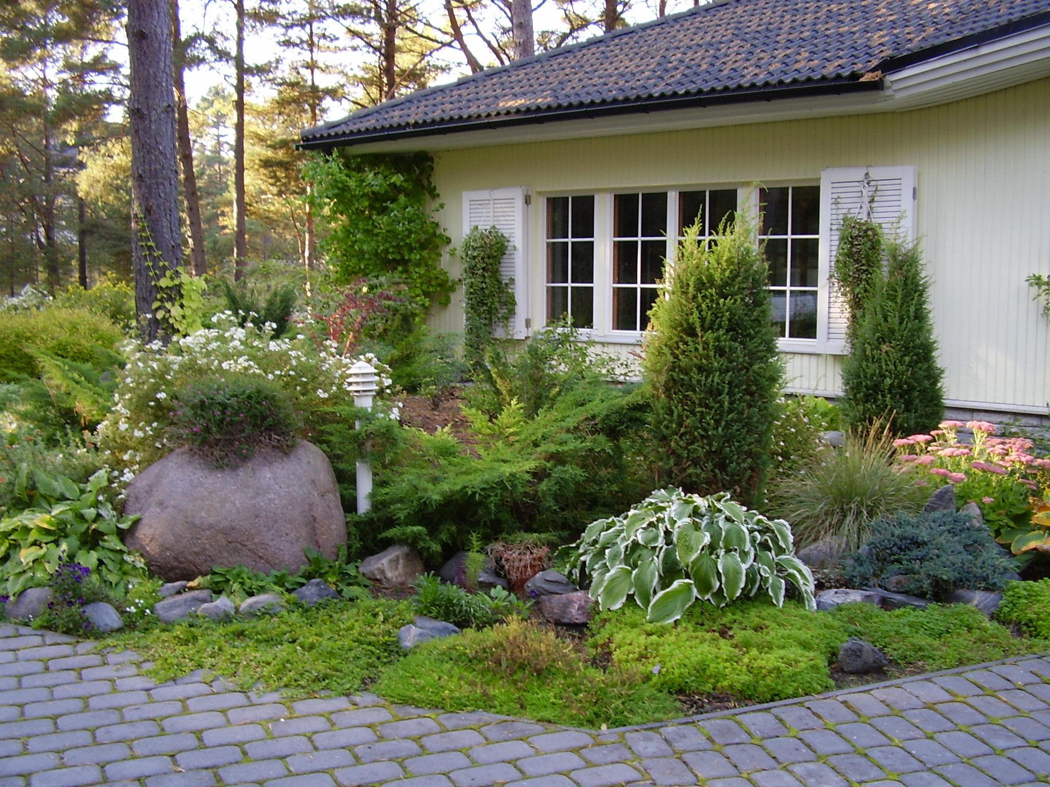 настоящее время фотографии озеленение небольшого сада темные