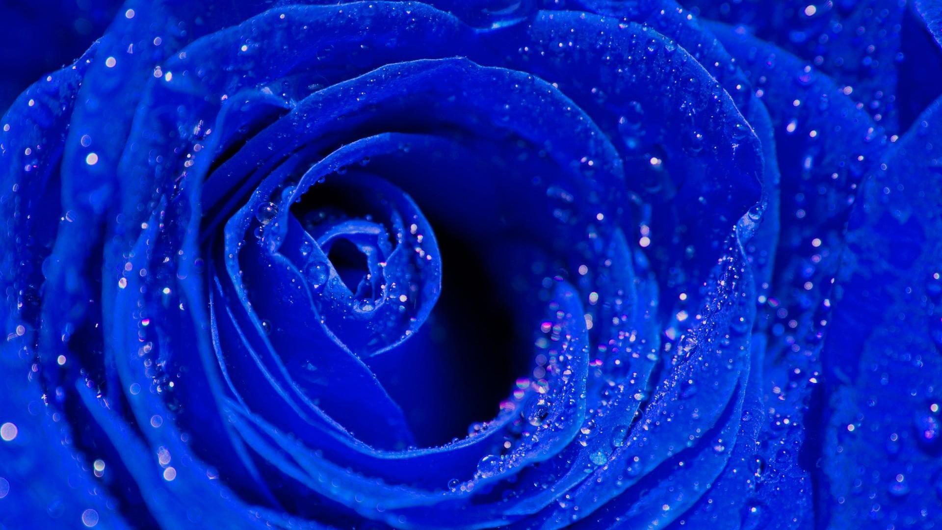 картинки на рабочий стол синий голубой
