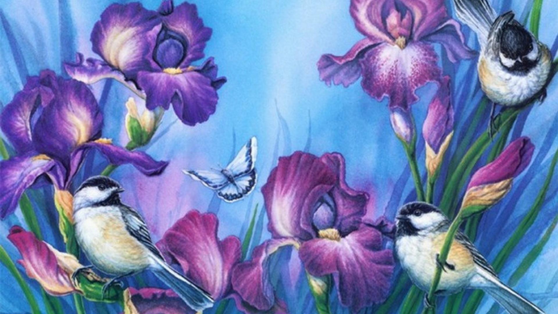 Птички картинки красивые обои на телефон художников, анимационные мая
