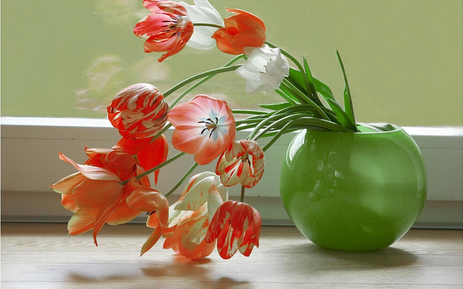 Картинка на рабочий стол цветы в вазе