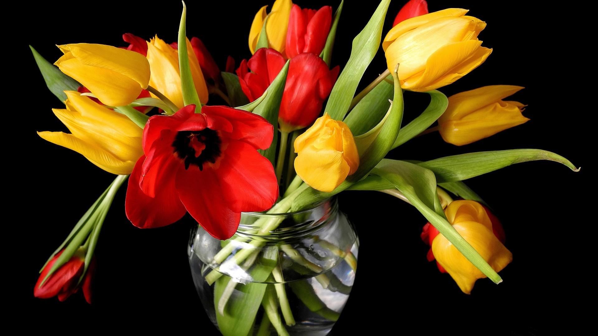 Открытки и фото тюльпаны, прикольные для мужчины