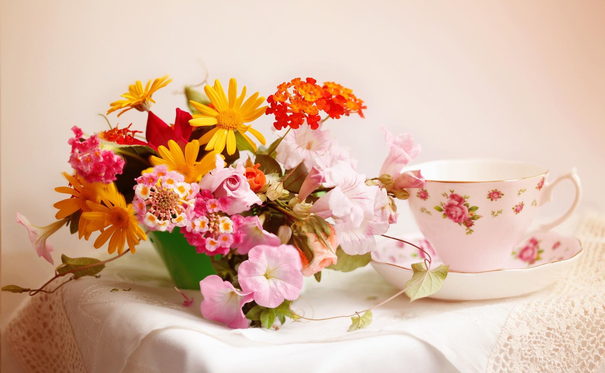 Внимание девушке, картинки красивые утренние цветы