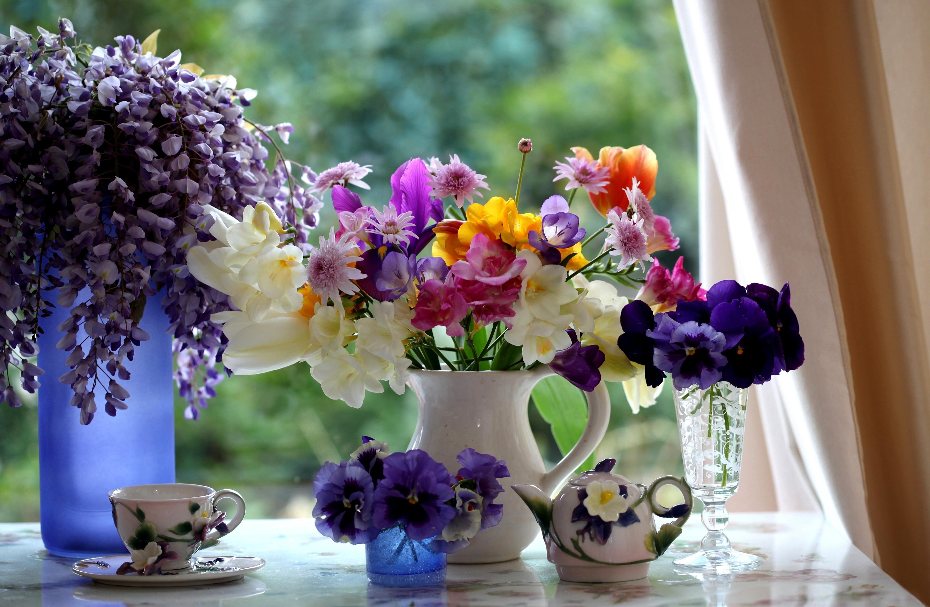 Цветов хризантемы, картинки добрые и красивые на рабочий стол