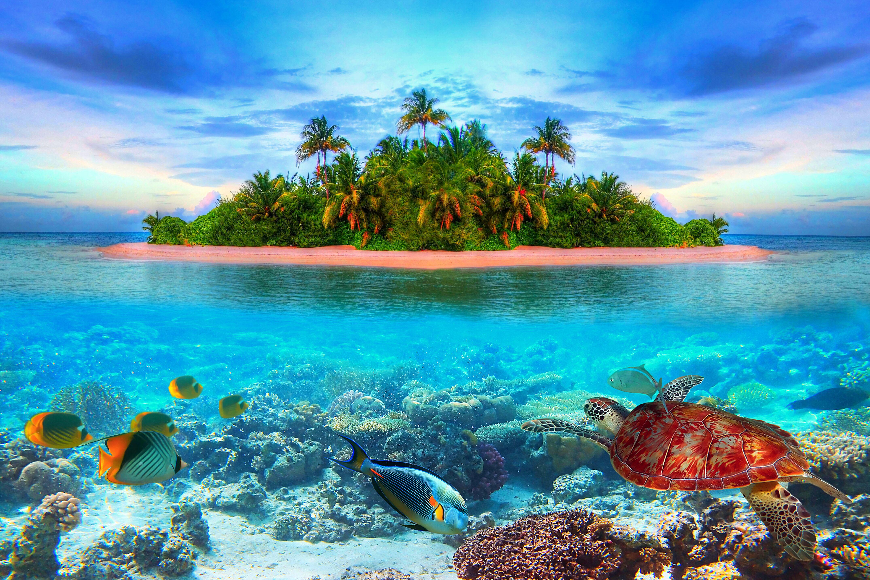 Картинки море с природой, годами картинки