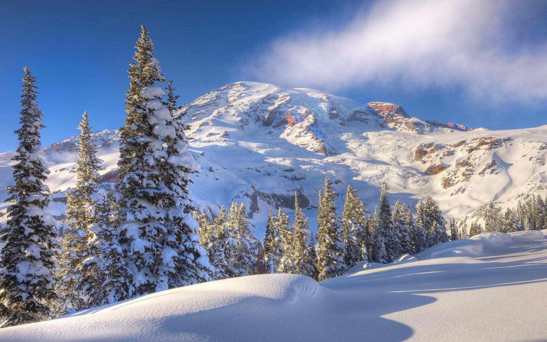 было картинки для рабочего стола зима пейзажи как-то привыкла